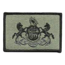 Tactical State Patch - Pennsylvania - View Colors