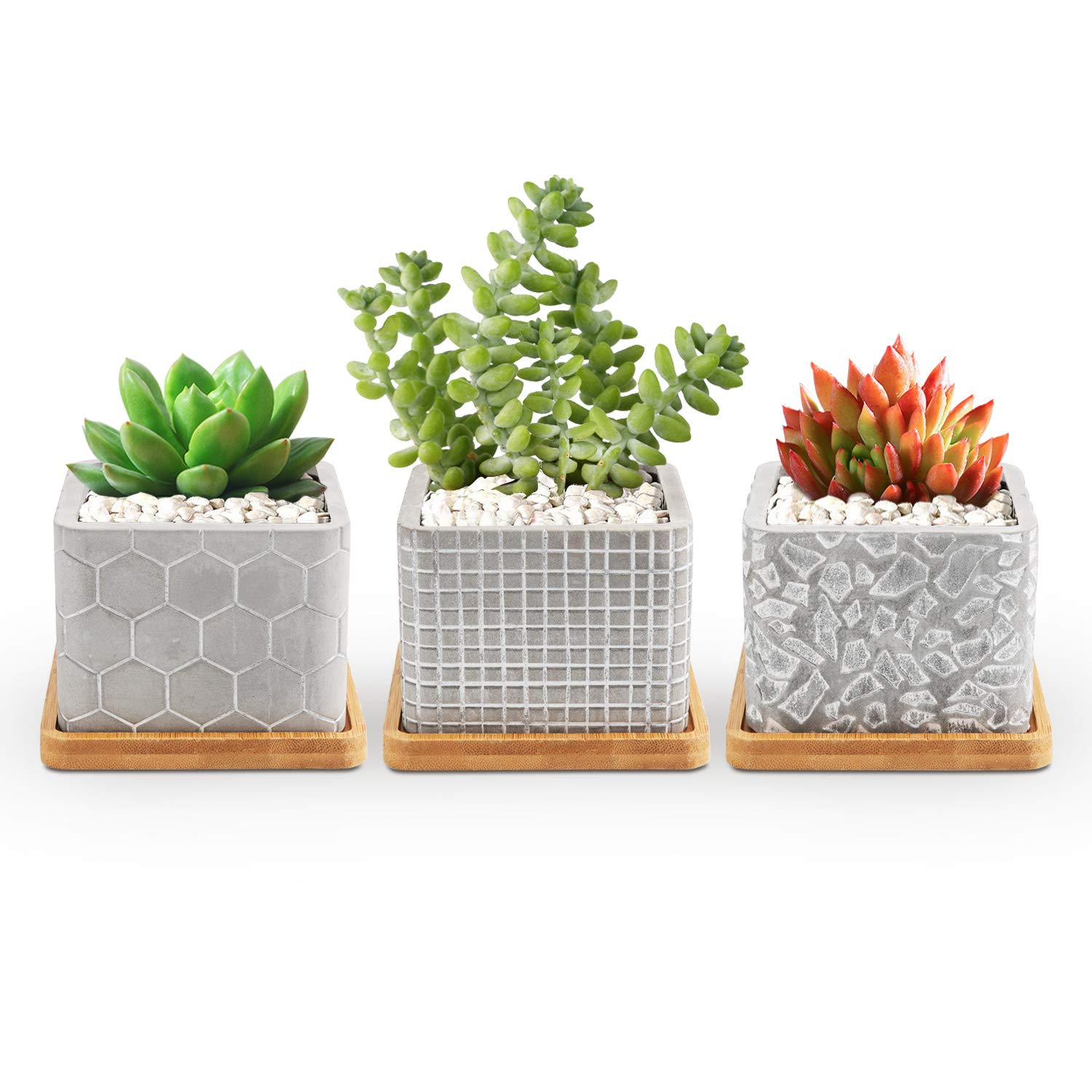 T4U 3.5 Inch Cement Succulent Pot, Concrete Planter Cactus Plant Herb Container for Gardening Home and Office Decoration Birthday Wedding Gift, Set of 3