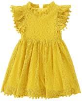 RJXDLT Toddler Girl Lace Dress Baby Girls Elegant Dress Girl Ruffle Sleeve Lace Dress Princess Party Dress