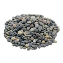 LYTIO - Decorative Pebble Rocks Different Shapes and Sizes from Mexico's Finest Beaches, 100% Organic Non Toxic Decorate Your Home, Garden, Office, Pond, Pots (1LB, Mixed)