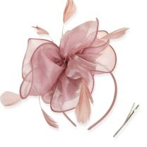 DRESHOW Fascinators Hat Tea Party Headwear Ribbons Feathers on a Headband and a Clip for Girls and Women