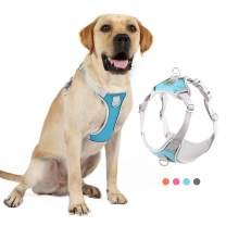 Negbpol Dog Harness, No-Pull Reflective Vest Pet Harness with 2 Leash Clips,Lightweight No Pull Dog Harness Adjustable Breathable Pet Oxford Material Vest for Small Medium Large Dogs,Blue,S