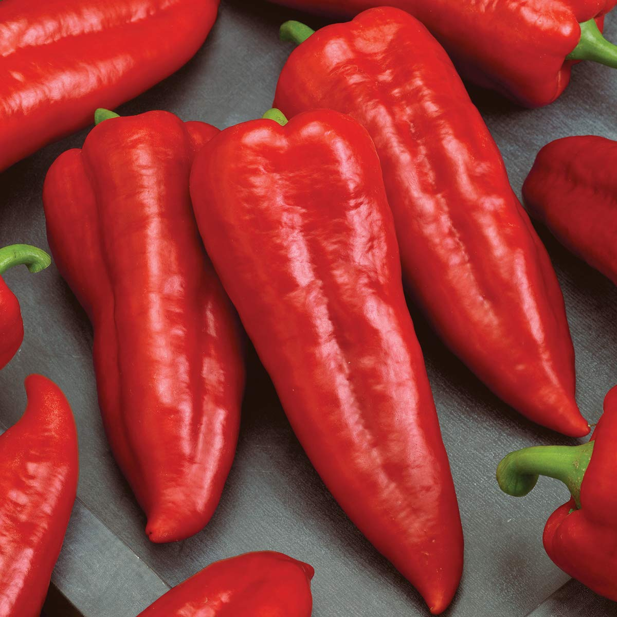 Burpee Marconi Rosso (Organic) Sweet Pepper Seeds 20 seeds