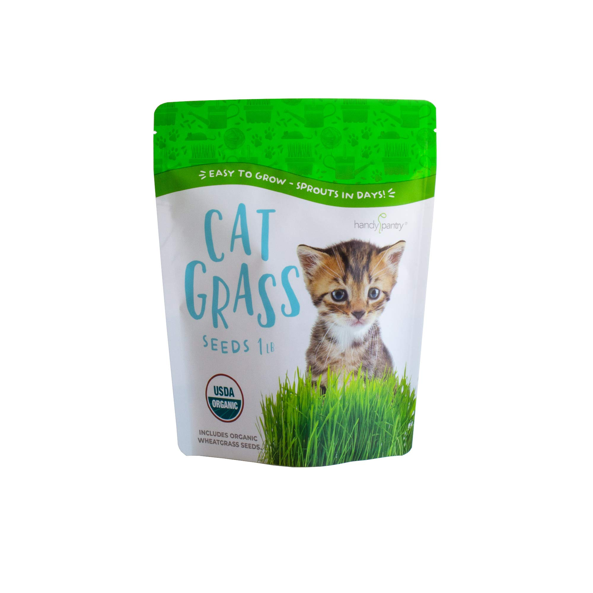 Handy Pantry Organic Cat Grass Seeds for Planting Grow Healthy Non-GMO Wheatgrass Snacks for Your Cat