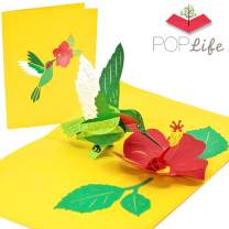 PopLife Hummingbird Pop Up Mother's Day Card for Mom - 3D Happy Anniversary for Her, Flower Pop Up Birthday Card, Thank You, Get Well, Sympathy - for Wife, for Sister, for Daughter, for Grandma
