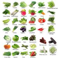 Seeds for Planting Vegetables Variety 40 Pack:Cucumber,Celery,Tomato,Carrot,Parsley,Lettuce,Zucchini,Cabbage,Peas,Okra,Strawberry,Watermelon,Chili,Crown Daisy,Eggplant,White waxy corn,Muskmelon,String