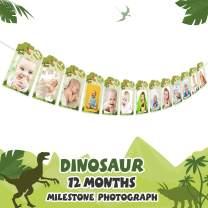 AERZETIX 1st Birthday Baby Dinosaur Photo Banner Newborn 1 - 12 Month Customize Baby Growth Photo Birthday Party Bunting Decoration - Green
