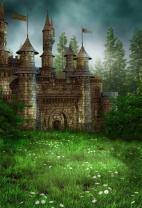 AOFOTO 3x5ft Magic Forest Vintage Medieval Castle Background Fairytale Florets Meadow Photography Backdrop Wonderland Princess Knight Prince Kid Girl Boy Artistic Portrait Photo Studio Props Wallpaper