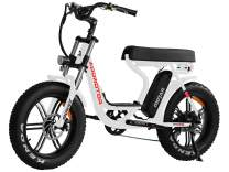 Addmotor MOTAN Electric Bike Step Through 20 inch Fat Tire 750W Motor E Bike Removable 11.6Ah Lithium Battery Throttle Pedal Assist M-66 R7 Power Bikes for Adults+Fenders+Headlight(White)
