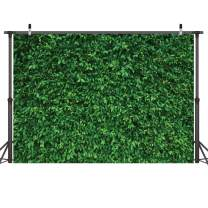 LYWYGG 10x8FT Green Leaves Photography Backdrops Mmicrofiber Nature Backdrop Birthday Background for Birthday Party Seamless Photo Booth Prop Backdrop CP-87-1008