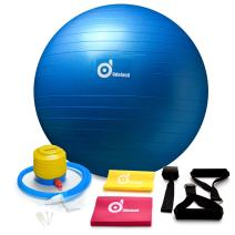 2000lbs Anti-Burst Exercise Stability Ball with 2 Sets Resistance Loop Bands,Pack w/Pump/Door Anchor and Handles for Yogo,Fitness,Rehabilitation Workout