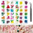 LIMGLIM 120pcs Nail Dried Flowers 3D Nail Art Supplies Stickers Decoration Tips Manicure Decor Mixed Accessories for Nail Art Supplies, Natural Real Dry Flower Kit with a Curved Tweezers (3 Boxes)