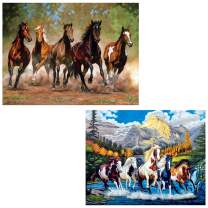 DIY 5D Diamond Painting Kits for Adults Full Drill Embroidery Pictures Arts Crafts for Home Wall Decor Horse 15.7x11.8in 2 Pack by Cenda
