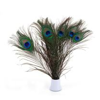 "Bseash Real Natural Peacock Eye Feathers 10-12"" (25~30cm) Great Wedding Christmas Halloween Decorations House Decoration (10)"