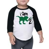Two Birthday Dinosaur Shirt for Boys Second Birthday Dinosaur Outfit