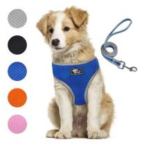 Puppy Harness and Leash Set - Dog Vest Harness for Small Dogs Medium Dogs- Adjustable Reflective Step in Harness for Dogs - Soft Mesh Comfort Fit No Pull No Choke (L, Blue)