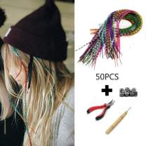 Amesun 50PCS Feather Hair Extension Long Rainbow Multiple Color Hairpiece+ Plier + Needle Pulling Hook Loop Tool + 100PCS Micro Link (Mix Color)