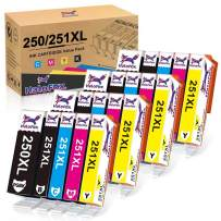 HaloFox Compatible Ink Cartridge Replacement for Canon PGI-250XL CLI-251XL to Use with Canon PIXMA MG5420 iX6820 MG5520 IP7220 Printer Ink(4 PGBK, 4 Black, 4 Cyan, 4 Yellow, 4 Magenta, 20-Pack)