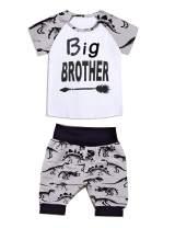 Aslaylme Toddler Big Brother Outfit Little Boys Dinosaur Pant Set