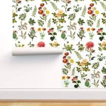Spoonflower Peel and Stick Removable Wallpaper, Botanical Garden Floral Flowers Baby Girl Print, Self-Adhesive Wallpaper 24in x 108in Roll
