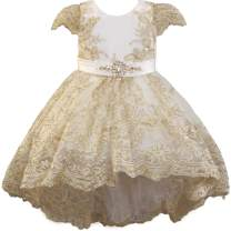 Baby Special Occasion Dress High Low Flower Girl Dress Baby Capped Sleeves Party Holiday 0-24M