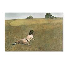 Christina's World by Andrew Wyeth, 30x47-Inch Canvas Wall Art