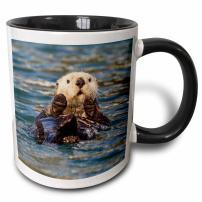 3dRose Sea Otter, Prince William Sound, Alaska, USA Mug, 11 oz, Black