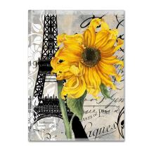 Paris Blanc by Color Bakery, 14x19-Inch Canvas Wall Art