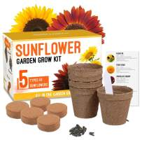 Sunflower Grow Kit - Grow 5 Different Sunflowers - A Complete Beginner Gardeners Gift Growing Set to Start Your Own Indoor Flower Garden