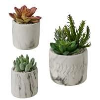 MOTINI 3 Pac Artificial Succulent Plants Decorative Faux Succulent Potted Plants Faux Tabletop Greenery Round Stone Pot Plant Decor