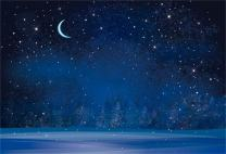 AOFOTO 8x6ft Dreamy Moon Night Fantasy Snowflake Backdrop Winter Forest Blurry Pine Trees Photography Background Cartoon Stars Fairy Tale Christmas Photo Studio Props Infant Baby Child Vinyl Wallpaper