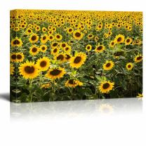 "Canvas Prints Wall Art - Beautiful Scenery/Landscape Large Sunflower Field | Modern Wall Decor/Home Decoration Stretched Gallery Canvas Wrap Giclee Print & Ready to Hang - 12"" x 18"""
