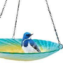 DBassinger Hanging Bird Bath Glass Birdbaths Water Ripple Rim 12.5 Inch Outdoor Bird Feeder for Garden Decoration