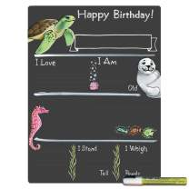 Cohas Birthday Milestone Board with Ocean Theme and Reusable Chalkboard Style Surface, 12 by 16 Inches, White Marker