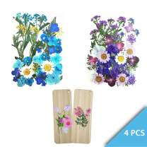 Set of 4 Packets Real Pressed Flowers Includes 2 DIY Flowers Wooden Bookmarks and 2 Dry Flowers Materials for Make Art & Craft (Purple and Blue)