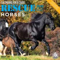 2020 Rescue Horses Wall Calendar by Bright Day, 16 Month 12 x 12 Inch, Barn Farm Animals for a Cause