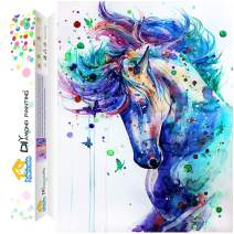 Dylan's Cabin DIY 5D Diamond Painting Kits for Adults,Full Drill Embroidery Paint with Diamond for Home Wall Decor(horse/12x16inch)