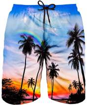 Asylvain Men's Bathing Shorts Swim Trunks with 3D Graphic Coconut Tree and Palm Sunset in Beach Design Quick for Big and Tall Men, XX-Large