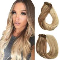 Ombre Clip in Human Hair Extensions Golden Brown to Blonde Highlighted Clip in Real Hair Extensions Double Weft 7 Pcs Clip on for Women 16 Inch 120G