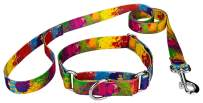 Country Brook Petz - Paint Splatter Martingale Dog Collar and Leash Set - Groovy Collection with 5 Far Out Designs (1 Inch, Medium)