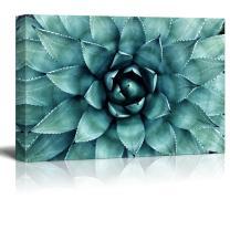 "wall26 - Closeup Teal Succulent Plant Gallery - Canvas Art Wall Decor - 12""x18"""
