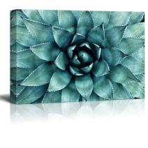 "wall26 - Closeup Teal Succulent Plant Gallery - Canvas Art Wall Decor - 12""x18"""