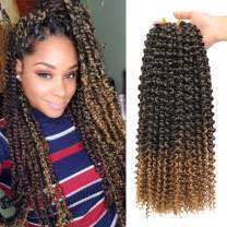 7 Packs Passion Twist Hair 18 inch Ombre Long Bohemian Braids for Water Wave Crochet Braiding Twists Synthetic Hair Extensions (18inch, T27#)