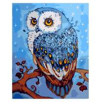 Paint by Numbers for Adults Kids Beginners with Paint and Brushes, Painted Owl (16×20inches,Without Frame)