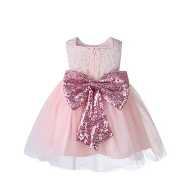 Christening Lace Flower Baby Girl Dress Princess Formal Prom Tutu Ball Gown