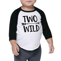 Bump and Beyond Designs Boy Second Birthday Shirt 2nd Birthday Boy Outfit Two Wild