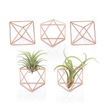 "Mkono 5 Packs Air Plant Holder Mini Metal Tabletop Himmeli Decor Modern Geometric Planter Tillandsia Display Stand with Each Side 2.6"" Long for Home, Office and Wedding Gift Idea, Pink"