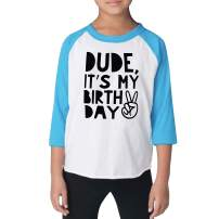 Bump and Beyond Designs Boy Second Birthday Shirt Kids Dude It's My Birthday Shirt