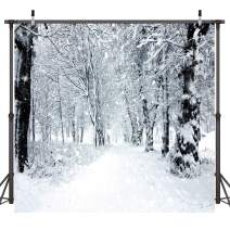 Dudaacvt 10x10ft Winter Photography Backdrops White Frozen Snow Backdrop Forest Tree Photo Background Year Theme Photo Backdrop D092 1010