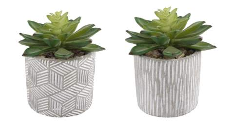 Flora Bunda Mid Century Artificial Plants Cactus Set Of 2 Artificial Succulent In 3 Cement Pot Grey Planter 2 Fake Potted Plants For Home Office Decorations